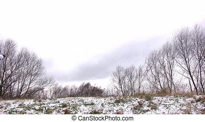 obracający, meadow., kobieta, śnieg