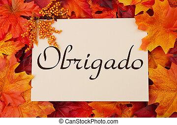 obrigado, tarjeta, con, permisos de otoño