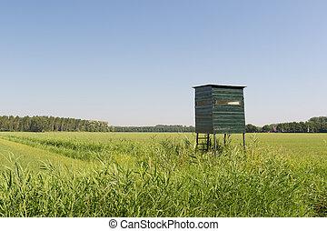 Observation hut for wild
