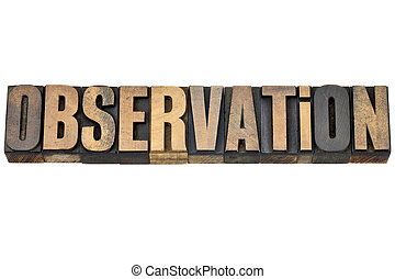 observation word in wood type