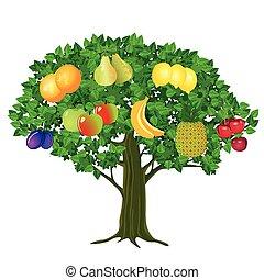 Obst-Baum.eps