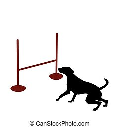obstacle, chien