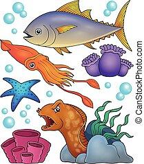 océano, fauna, topic, conjunto, 2