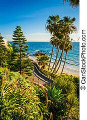 océano pacífico, parque, heisler, flores, laguna, vista