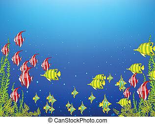 océano, submarino, mundo