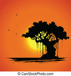 ocaso, árbol, vista