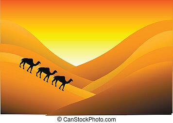 ocaso, en, desierto