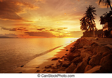 ocaso, en la playa