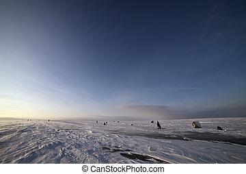 ocaso, en, un, invierno, día, en, holandés, paisaje