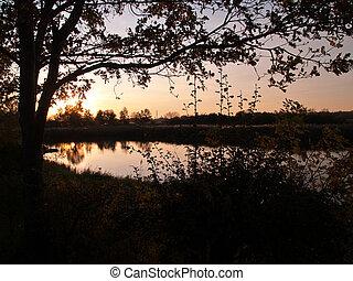 ocaso, encima, campo, lago