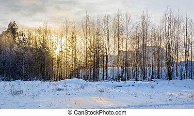 ocaso, invierno, aldea