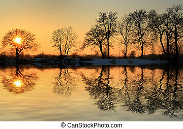 ocaso, invierno, oro