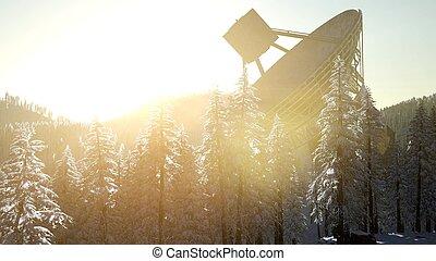 ocaso, observatorio, telescopio de radio, bosque