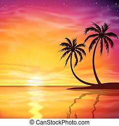 ocaso, salida del sol, con, árboles de palma