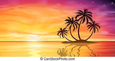 ocaso, salida del sol, con, palmera