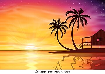 ocaso, salida del sol, con, playa, nuez