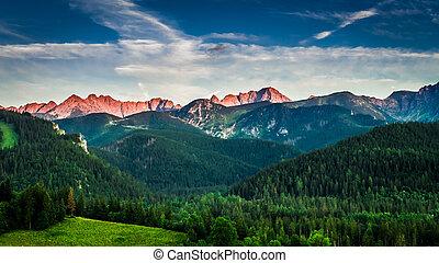 ocaso vermelho, em, montanhas, em, verão, polônia, europa