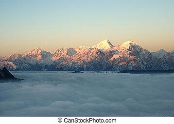 occidentale, sichuan, porcellana, bestiame, montagna, nuvola, cadute