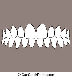 occlusion of the front teeth, correct closure of jaws in the...
