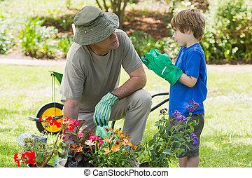 occupato, giardinaggio, nipote, nonno