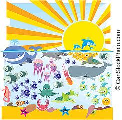 oceânicos, fauna