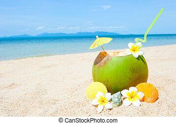 oceânicos, praia, com, palma, e, e, exoticas, coctail