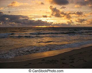 ocea, över, solnedgång
