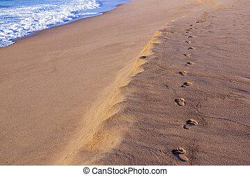 oceaan, spoor, zand, voetafdruk, volgende, strand, lege