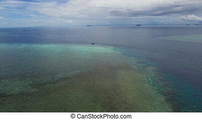 Ocean and coral reef underwater