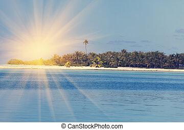 Ocean at sunset. Polynesia. Tahiti.