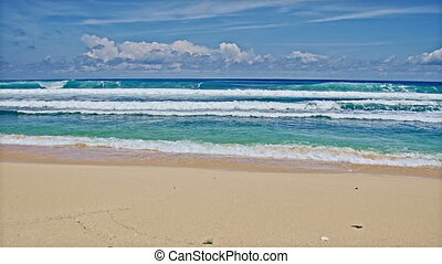 Ocean beach and big waves