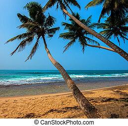 Ocean Beach Sri Lanka