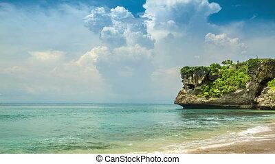 Ocean beach with trees on rock