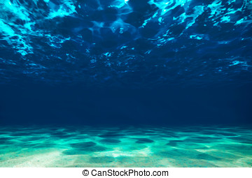 Ocean bottom, view beneath surface - Underwater, ocean...