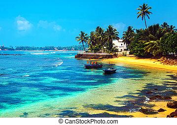 Sri Lanka - Ocean coast of Sri Lanka in the tropics