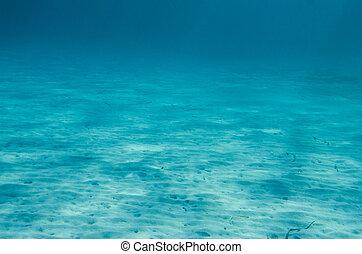 Ocean Floor underwater