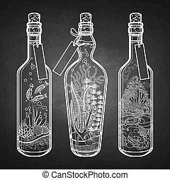 Ocean flora and fauna in bottles.