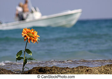 Ocean Flower with Boat - This is a shot f a orange sun...