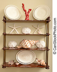 ocean or beach theme home decor - shells and other ocean...
