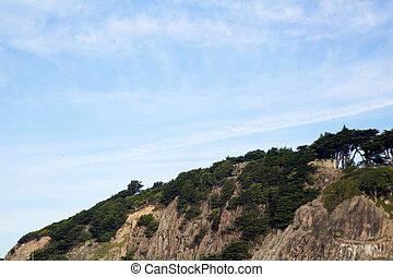 Ocean Pines cliff