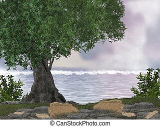 Ocean Rocks Background