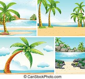 Ocean scene with coconut trees on beach