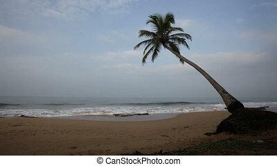 Ocean, Sri Lanka
