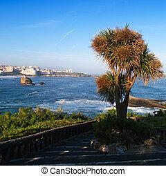 ocean - beautiful view, city, blue ocean