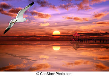 Seagull isflying on the ocean with a beautifull sunset in the background