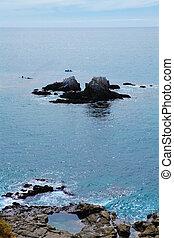Ocean view. Laguna Beach