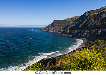 Ocean view with yellow wildflowers near Bixby Creek Bridge in Big Sur, California
