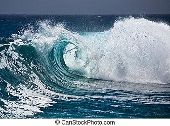 ocean vinka