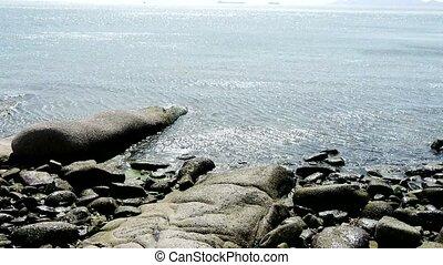 Ocean water surface and rock reef