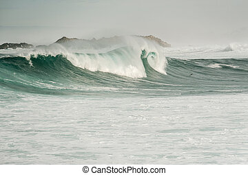 Ocean Wave at USA Pacific coast, California